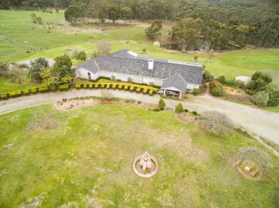SERENITY & SECLUSION ON 40 ACRES APPROX