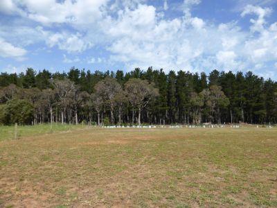 5 Lumber Crescent, Karridale