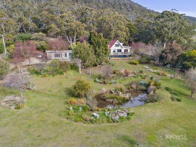 18039 Tasman Highway, Bicheno
