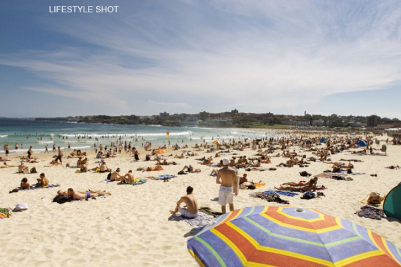Perfectly Located Studio Appartment Minutes to Bondi Beach & Bondi Junction