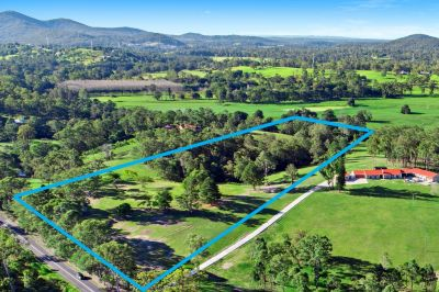 Beautiful 10.92 Acres in Guanaba Valley
