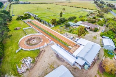 PREMIERE GREYHOUND RACING PROPERTY
