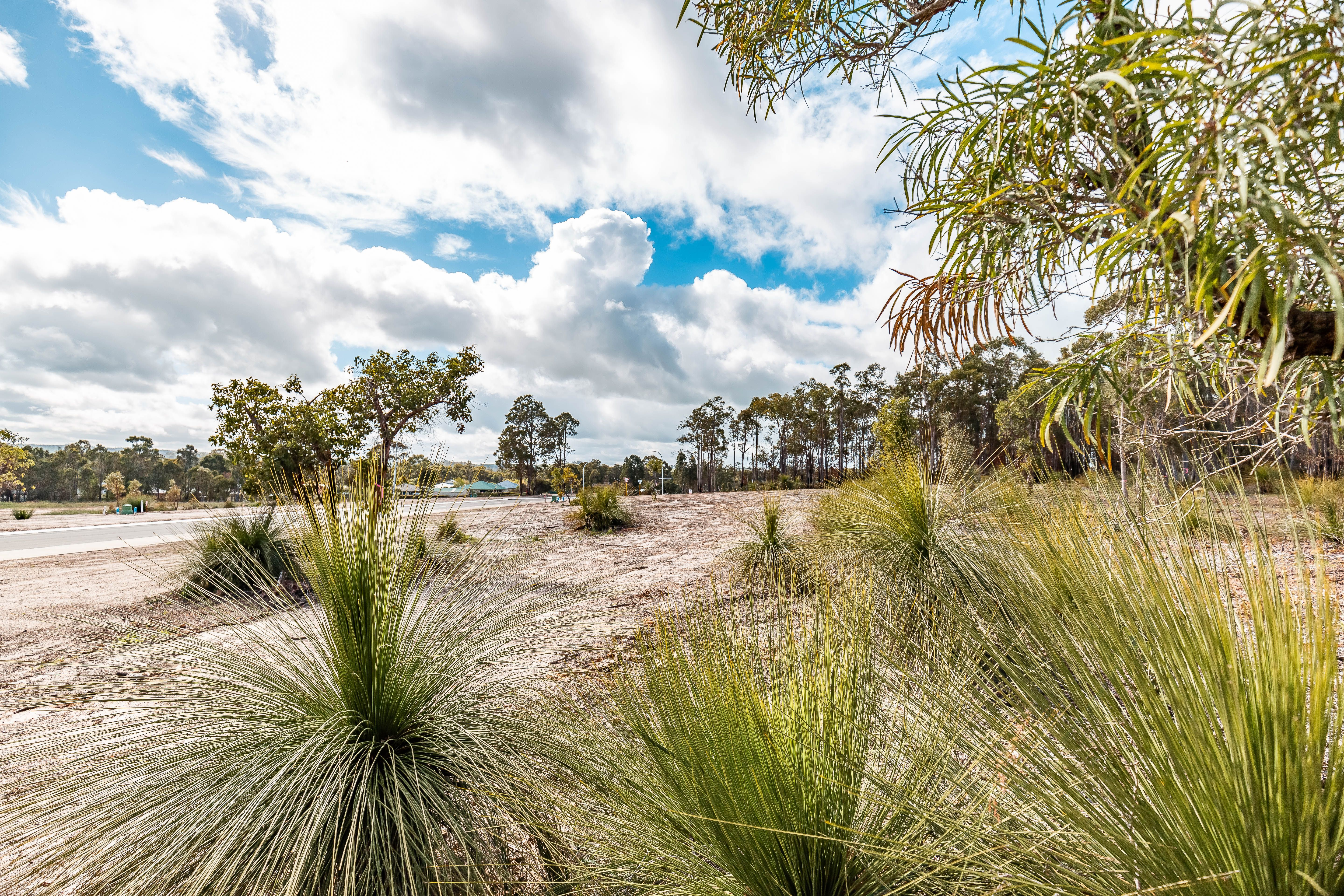 Lot/41 Orchid Approach, Donnybrook