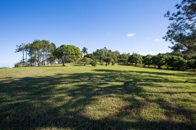 RURAL VIEW, QLD 4740