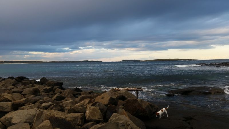 BAWLEY POINT, NSW 2539