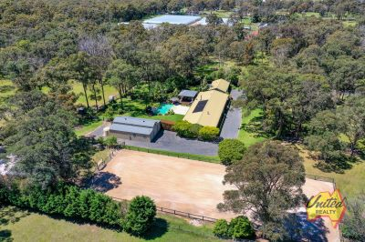 Horse Haven – Over 5 Acres of Paradise!