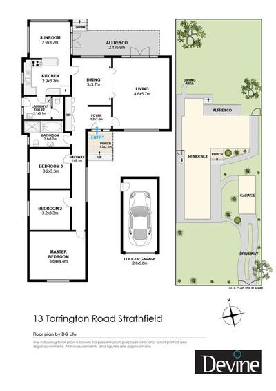 13 Torrington Road , Strathfield