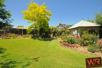 49596 South Coast Highway, Torbay