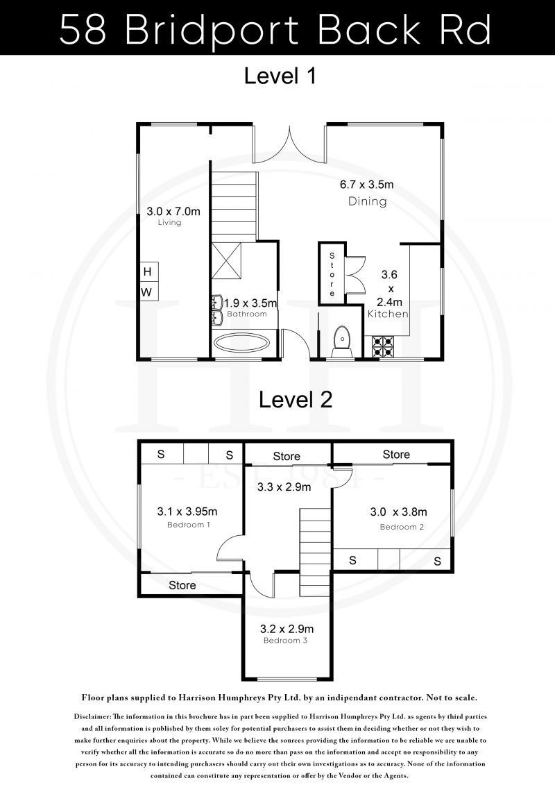 58 Bridport Back Road Floorplan