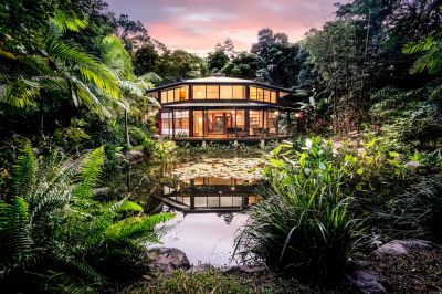 Exotic Tropical Rainforest Heaven
