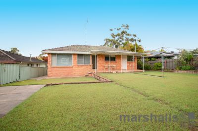 3 Griffiths Avenue, Floraville