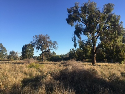 Land for Sale – Vineyard, Brewery, B&B potential, Market Garden or stylish retirement