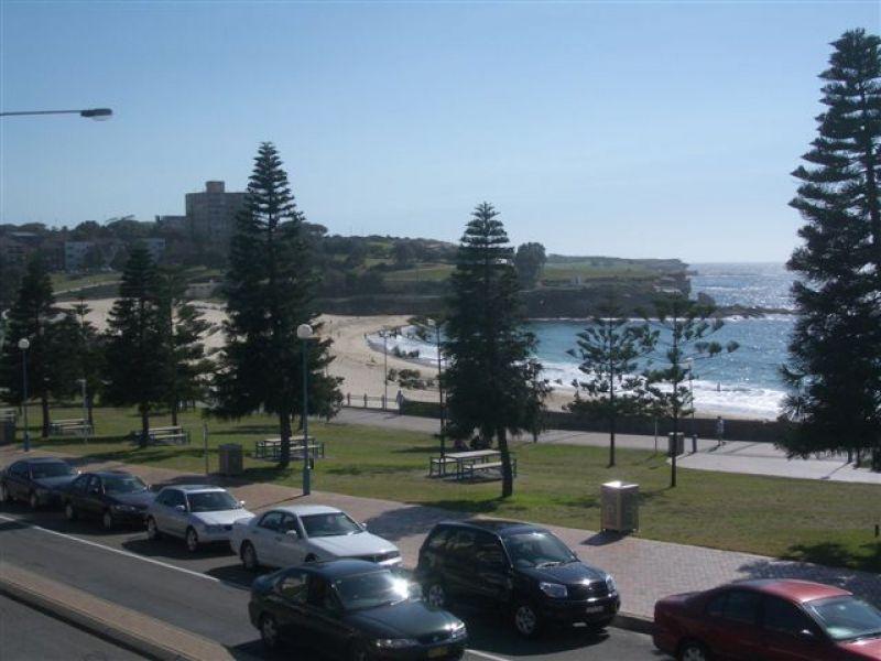 Private Rentals: 2/260 Arden Street, Coogee, NSW 2034