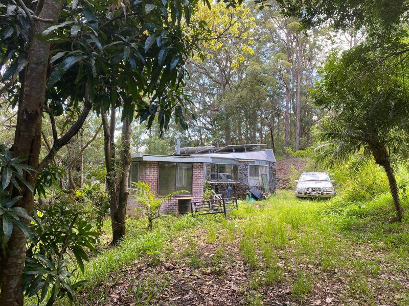 Renovators Rainforest Delight