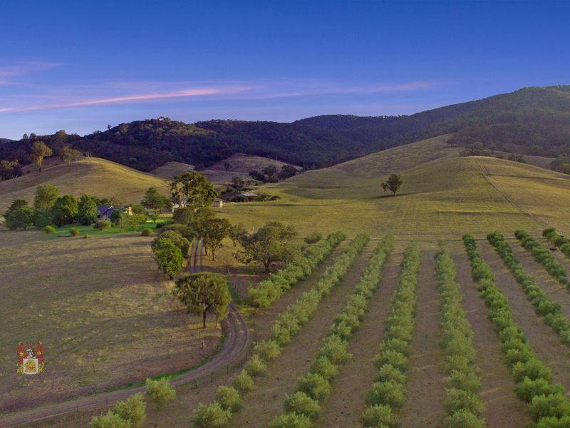 PRIDE OF THE GOULBURN VALLEY - 7 ACRES