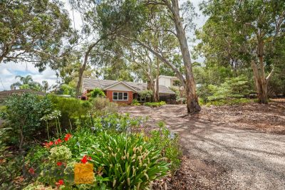 Four Bedroom House on 750 sqm of Land adjacent Black Hill Conservation Park