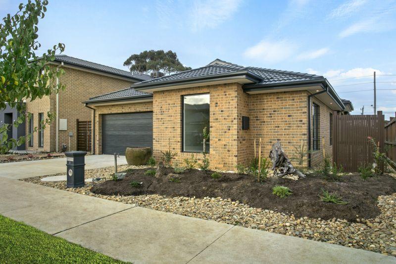 31 Rutledge Boulevard, North Geelong