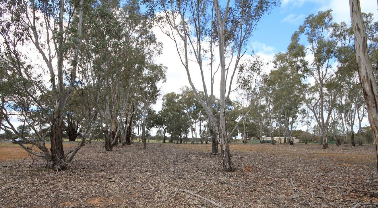 C/A 4/ Dunolly-Moliagul Road, Dunolly VIC 3472