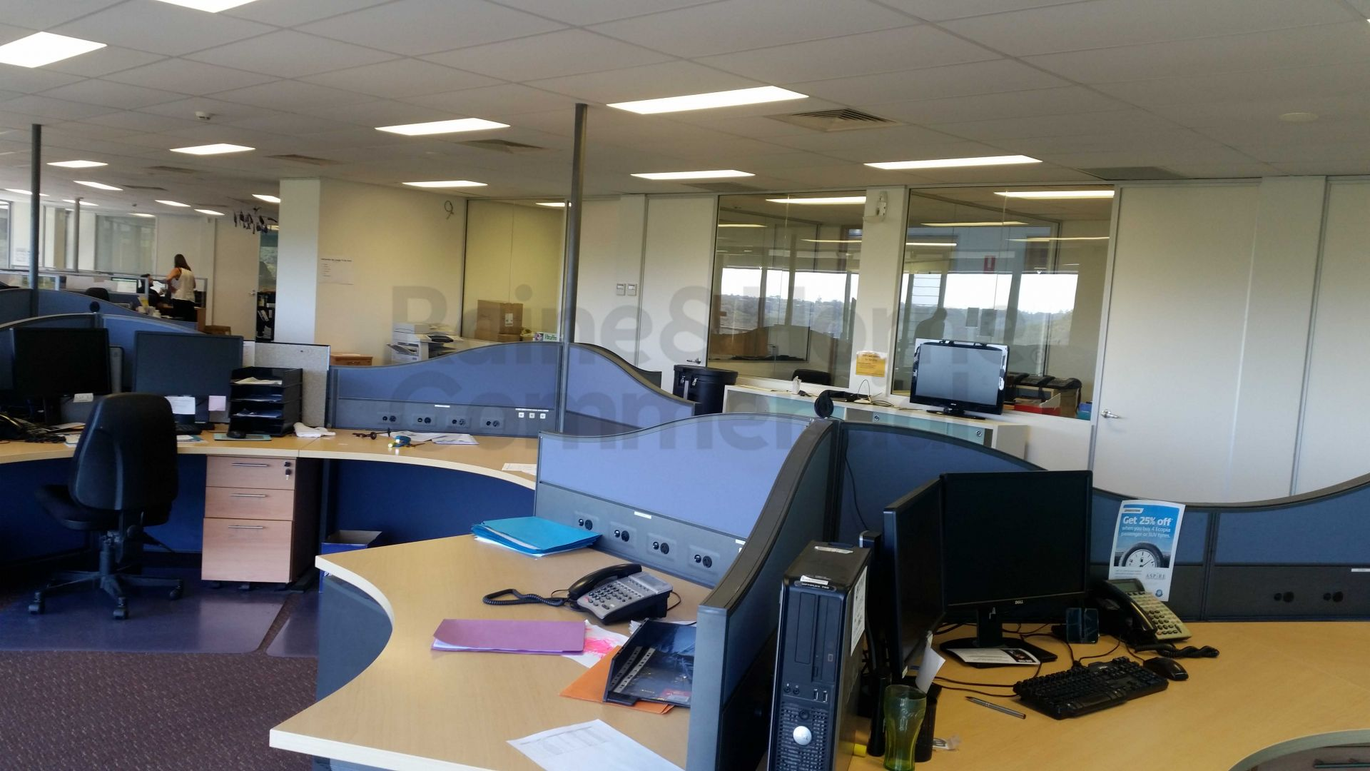 Picturesque Bush Views from Environmentally Friendly Office