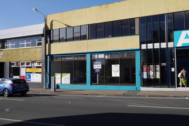 175 Vivian Street, Te Aro