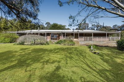 Rural Lifestyle, Horse Lovers Dream    4.07 ha 10acres approx.