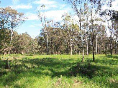 5 acres of vacant land !