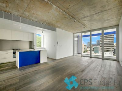LUXURY URBAN PENTHOUSE WITH LIFT TO LEVEL ACCESS & PRIVATE ROOF DECK