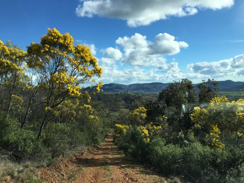 For Sale By Owner: Halls Creek, NSW 2346