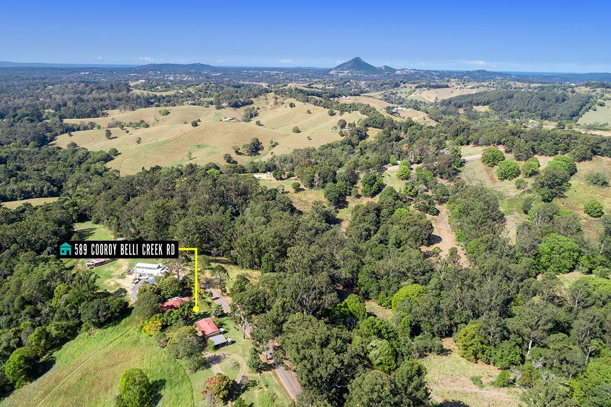 589 Cooroy Belli Creek Road, Black Mountain QLD 4563