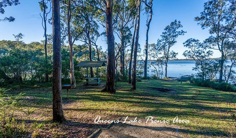 Lot 271 Corrigans Lane, LOGANS CROSSING NSW 2439