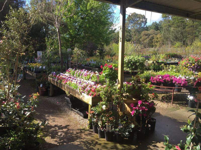 Se Suburbs Plant Nursery