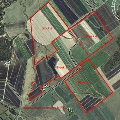 IRRIGATED BLACK SOIL FARM – 214.9 ACRES