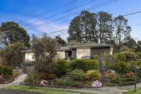 A renovated superstar surrounded by parklands!