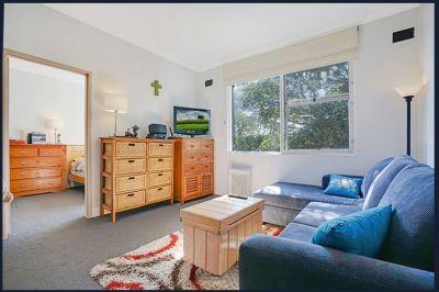 CAMPERDOWN, NSW 2050