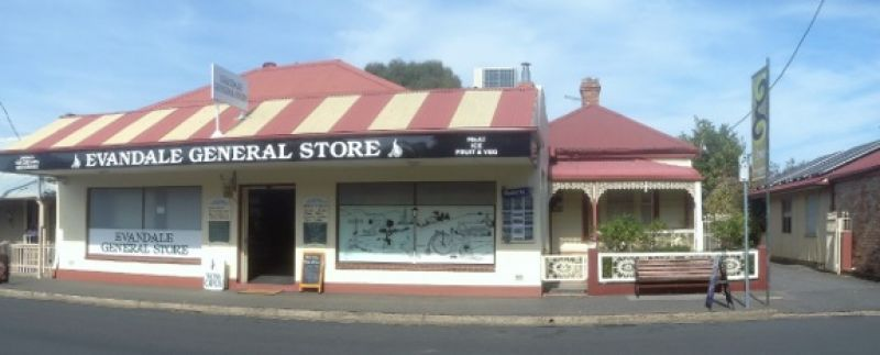 THRIVING VILLAGE GROCERY BUSINESS - EVANDALE