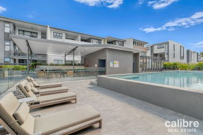 Brand New Designer Apartment in a Gorgeous Complex - Pool and BBQ Area