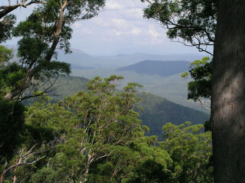 Rural Acreage Mountain Top Wilderness Retreat Pappinbarra near Wauchope & Port Macquarie
