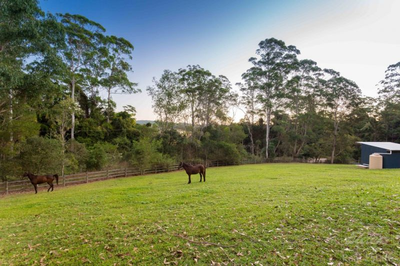 Verrierdale - Noosa Hinterland Golden Triangle . Acreage, Location, Peace and Privacy  Owner has instructed to SELL IT NOW!