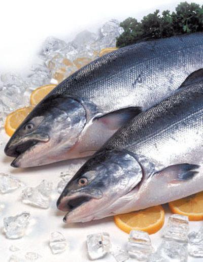 Fresh fish Shop in Westfield - Ref: 16629