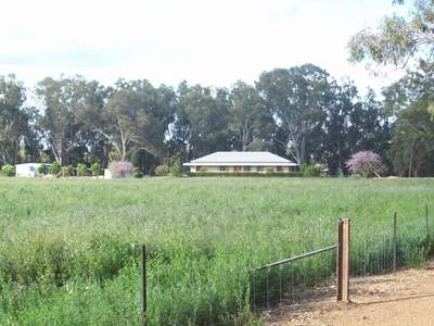 WARREN, NSW 2824