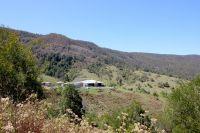 500 Acre Rural Grazing Farm Birdwood near Wauchope Port Macquarie