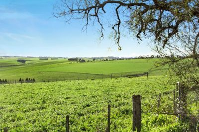 PANORAMIC NORTH FACING VIEWS - 1.0Ha (2.5 acres)