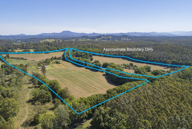 81 Acres, Coastal Holding, Permanent Hydes Creek