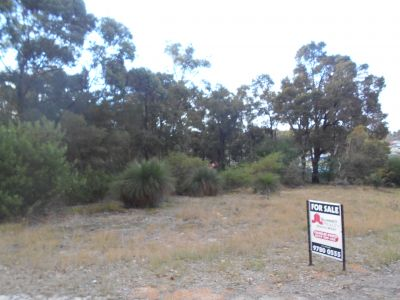 OPPORTUNITY KNOCKS - PRICE REDUCED