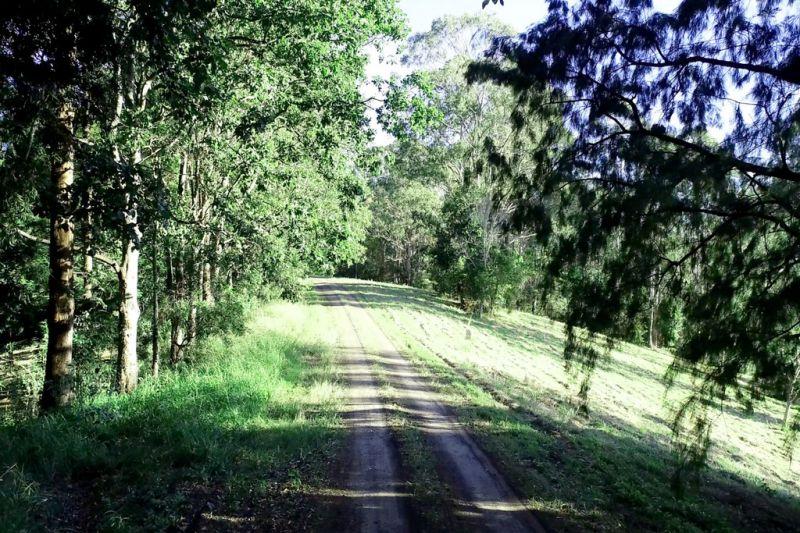 TREE TOPS HIDEAWAY