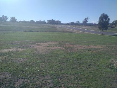 SPRINGDALE HEIGHTS, NSW 2641