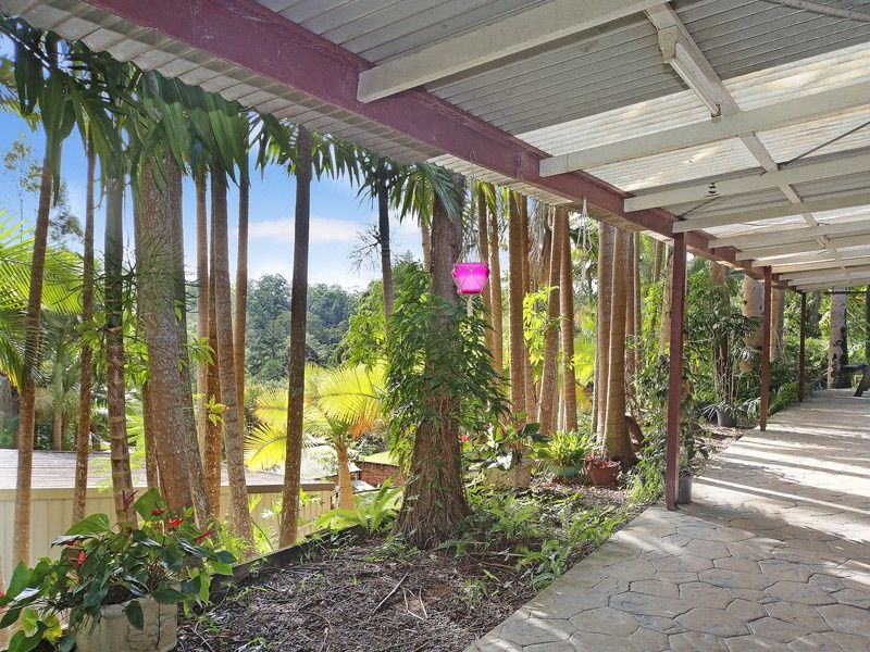 55 Youngs Drive, Doonan QLD 4562