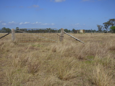 Cattle Fattening Block