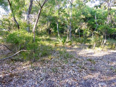 17 Flora Grove, Molloy Island