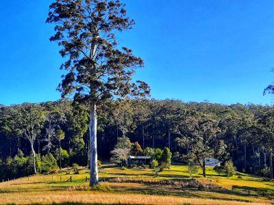 WOOTTON, NSW 2423